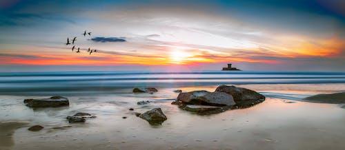 Δωρεάν στοκ φωτογραφιών με ακτή, άμμος, αντανάκλαση, αυγή
