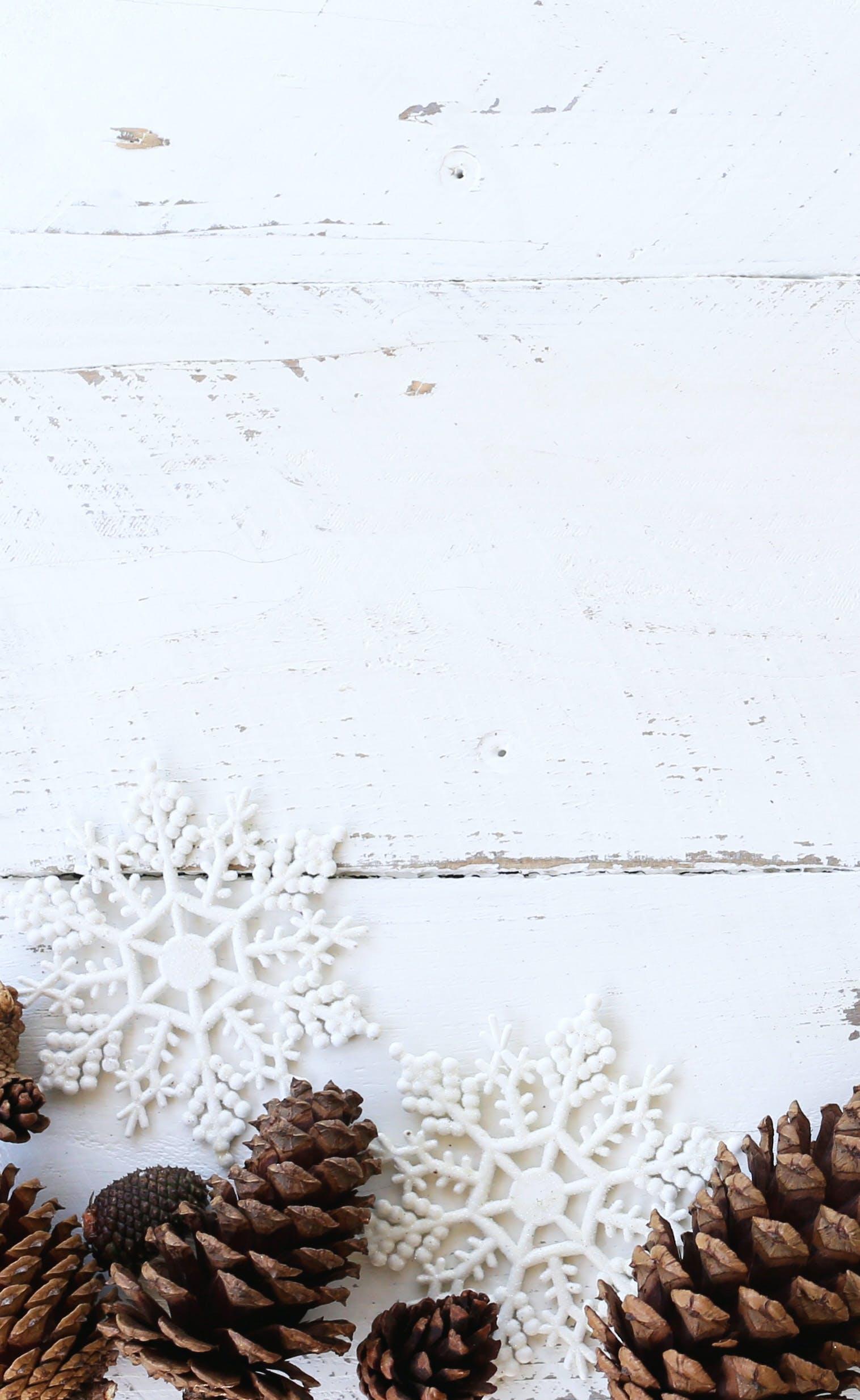 Gratis lagerfoto af blog billede, flatlay, hvid baggrund, hvid jul