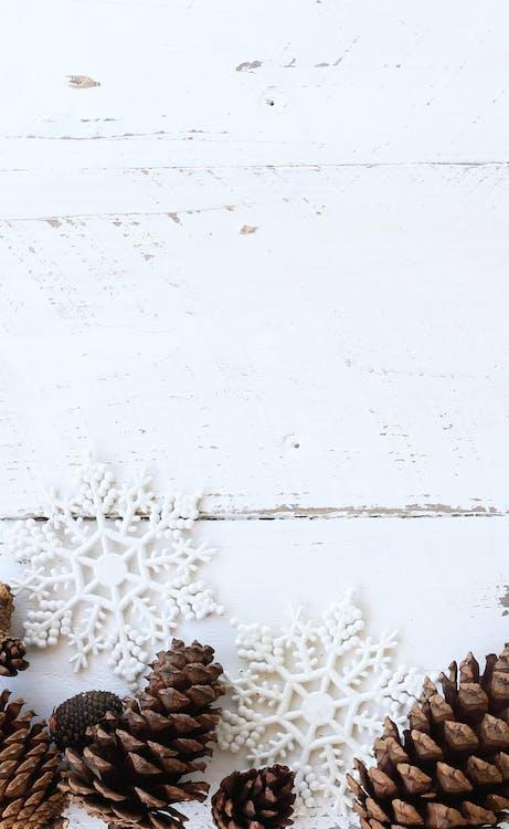 blog billede, flatlay, hvid baggrund