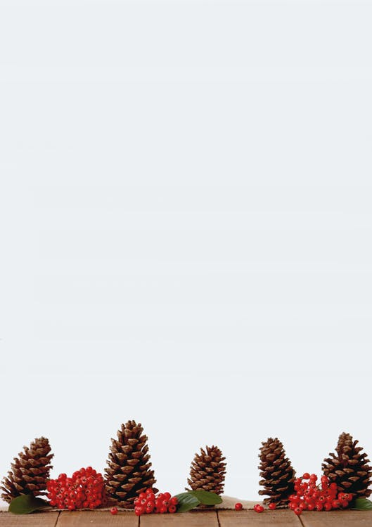 棕松果装饰