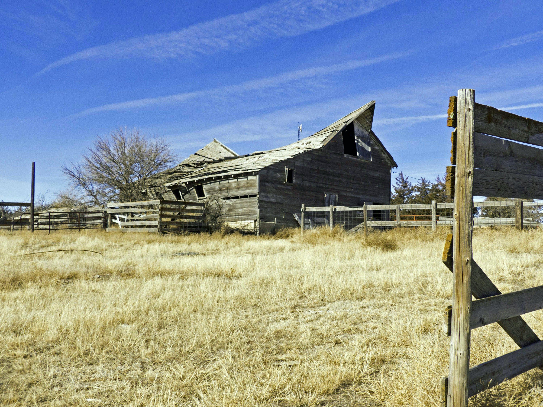 Foto profissional grátis de abandonado, área, árvores, campina