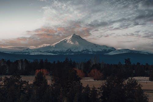 Bulutlu Gökyüzü Altında Dağın Yanında Karla Kaplı Yeşil Ağaçlar
