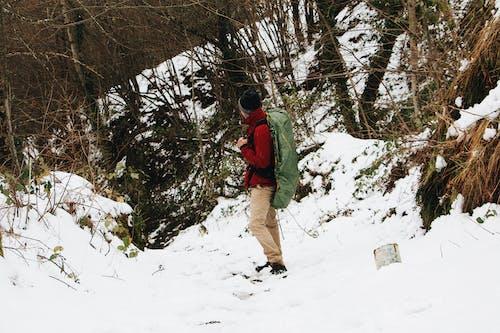 冒險, 冬季, 冰, 冷 的 免费素材图片