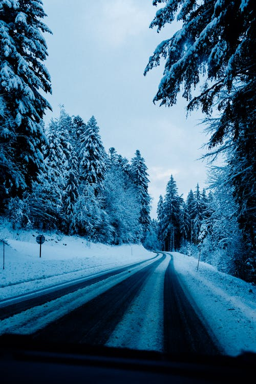 Through car windshield frozen roadway running among coniferous snowy woods on cold winter day