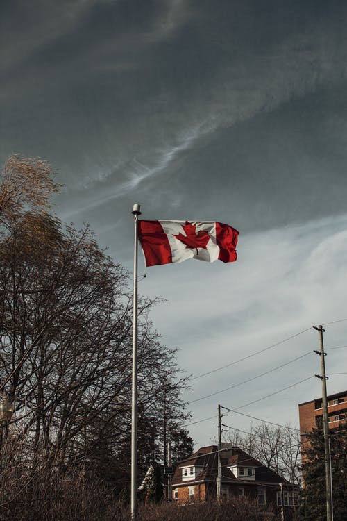 Low Angle Shot of Waving Canadian Flag