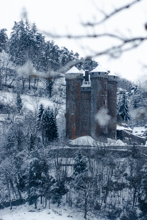 Old stone castle surrounded by coniferous trees in snowy forest on cloudy winter day