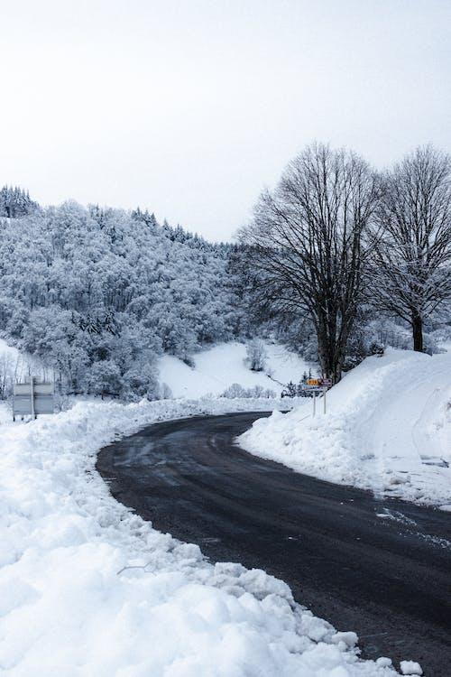 คลังภาพถ่ายฟรี ของ ICEE, ถนน, น้ำค้างแข็ง, น้ำแข็ง
