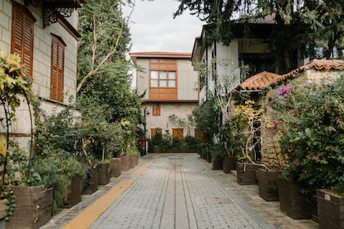 Walkway between Residential Houses