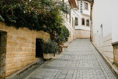 Darmowe zdjęcie z galerii z aleja, architektura, bruk, budynek