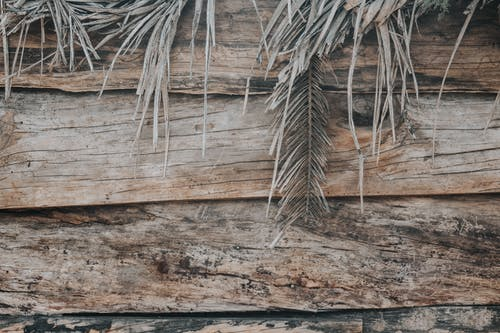 Close-Up Shot of Wooden Planks