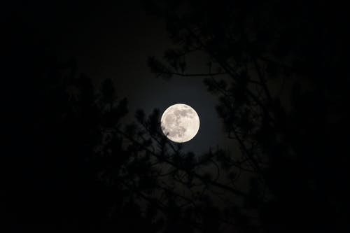 A Bright Full Moon in the Sky