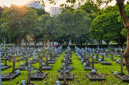 Cemetery with gravestones and green trees