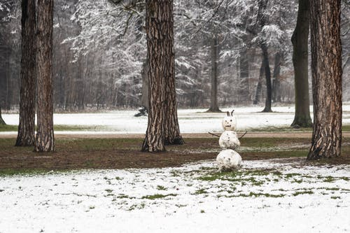 Dirty snowman in forest against trees