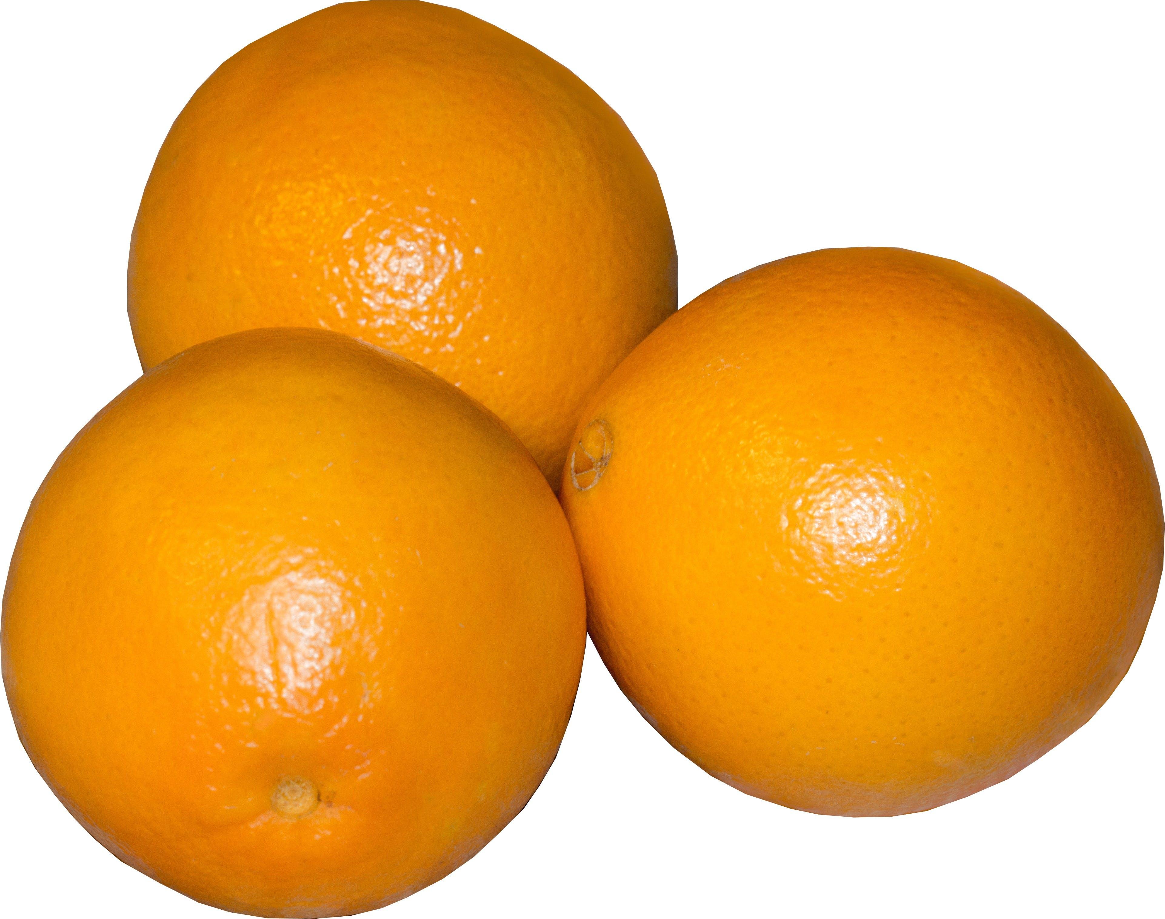 Free stock photo of food, orange, sweet, draft