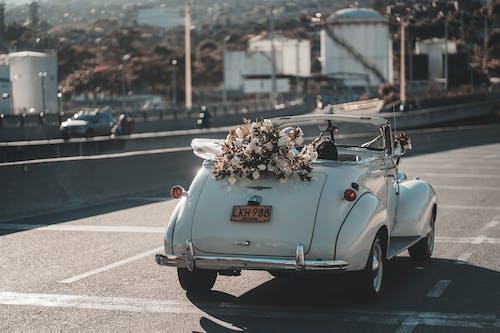 도로에 흰색과 갈색 꽃 컨버터블 자동차