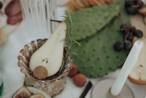 opuntia, 건강한, 계절의 무료 스톡 사진
