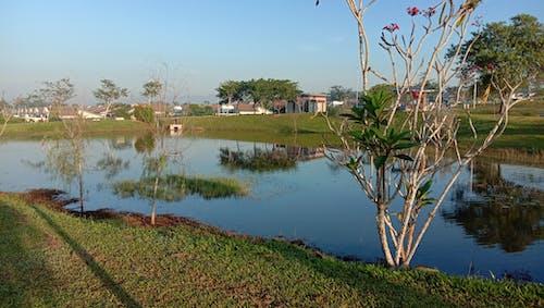 Imagine de stoc gratuită din agrement, lac