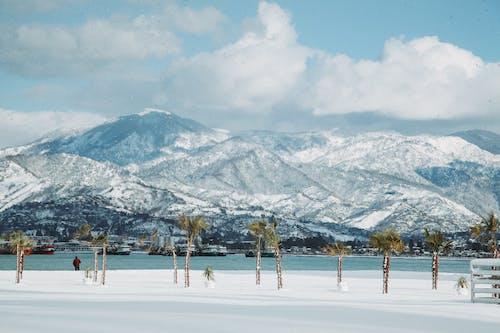 Snowy mountain ridge near sea and palm trees
