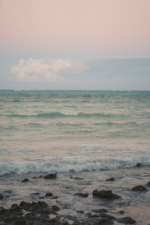 Photos gratuites de aube, bord de mer, cailloux