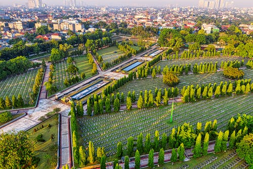 Drone view of main heroes cemetery with gravestones and alley surrounded by green trees located in Kalibata city with residential buildings
