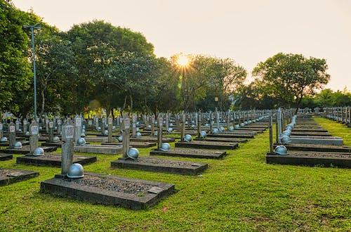 Gravestones with hardhats in cemetery