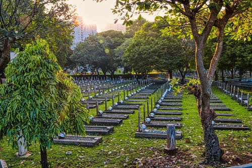 Rows of gravestones with military hardhats located on grassy national main heroes cemetery with lush tall green trees in Kalibata