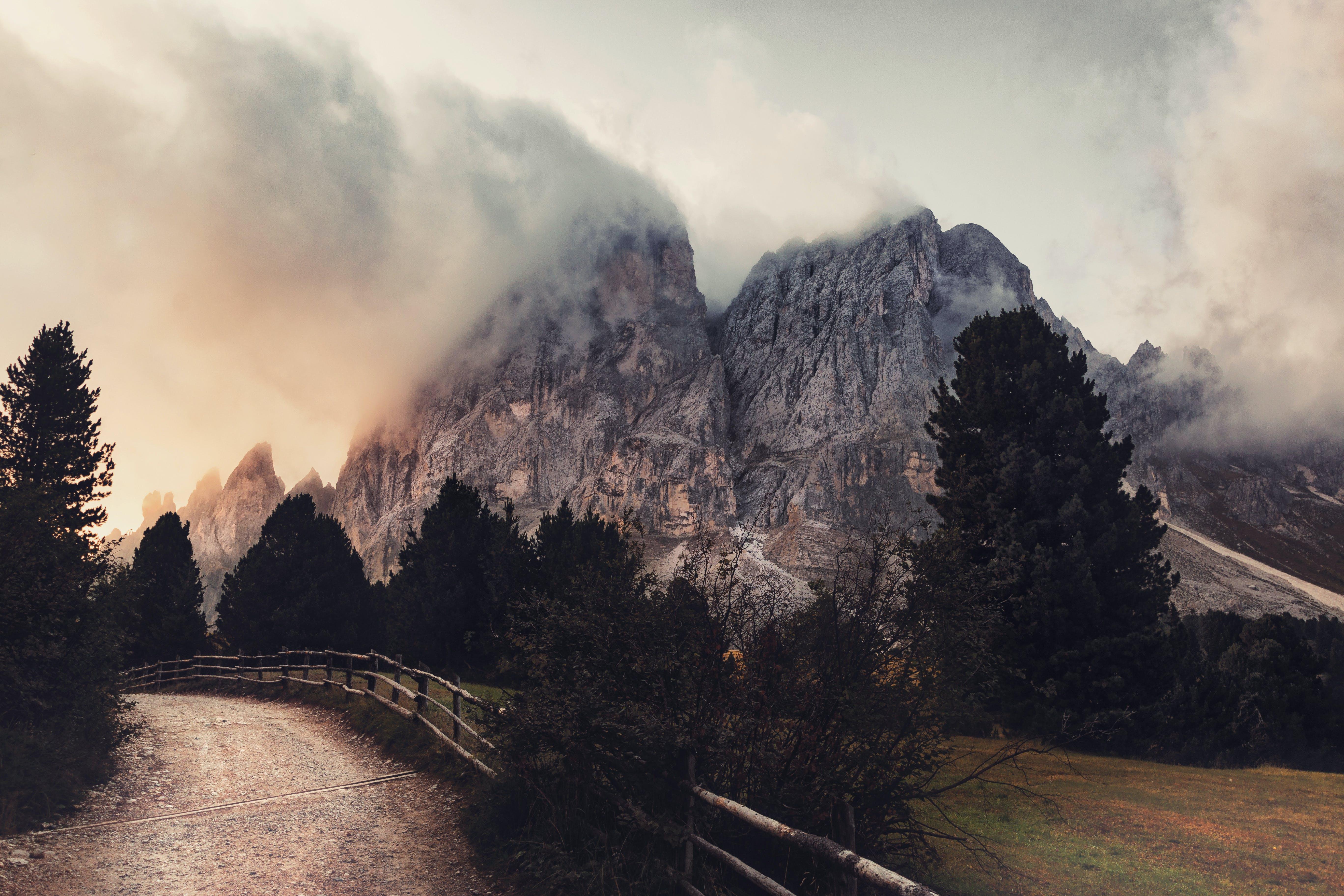 Kostenloses Stock Foto zu bäume, berge, dunstig, fahrbahn