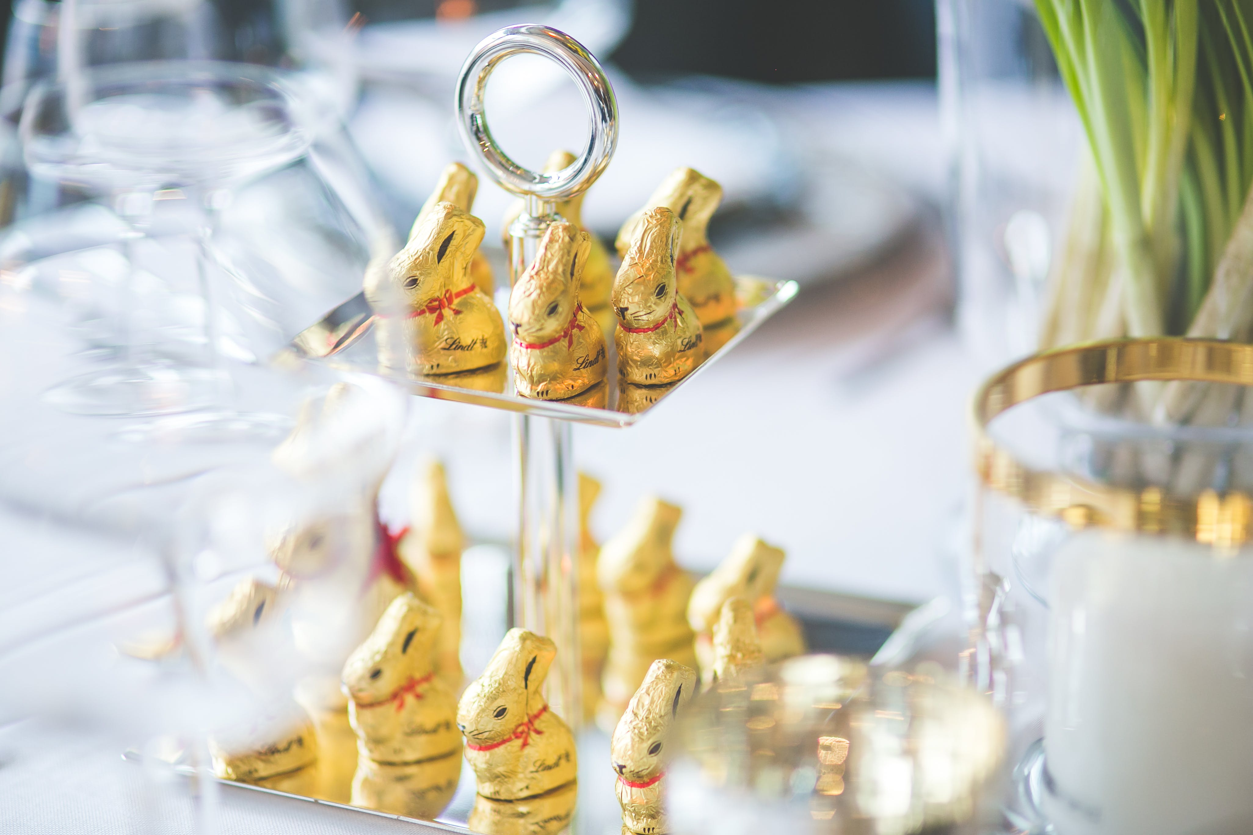 Golden Bunnies on the Tray