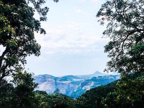 Kostenloses Stock Foto zu holz, dämmerung, landschaft, natur