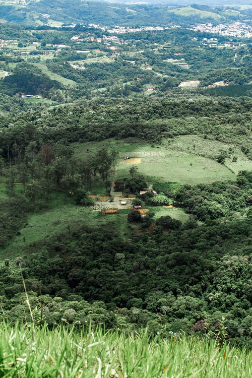 Aerial View of Green Trees and Mountains