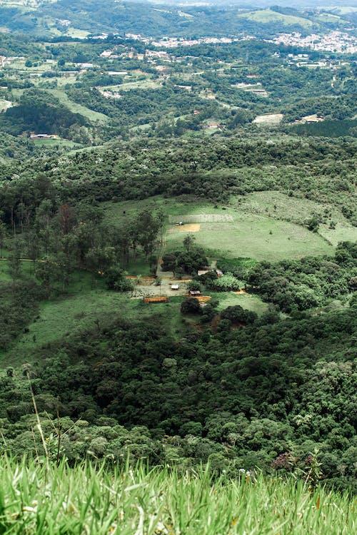 Vista Aérea De árvores E Montanhas Verdes