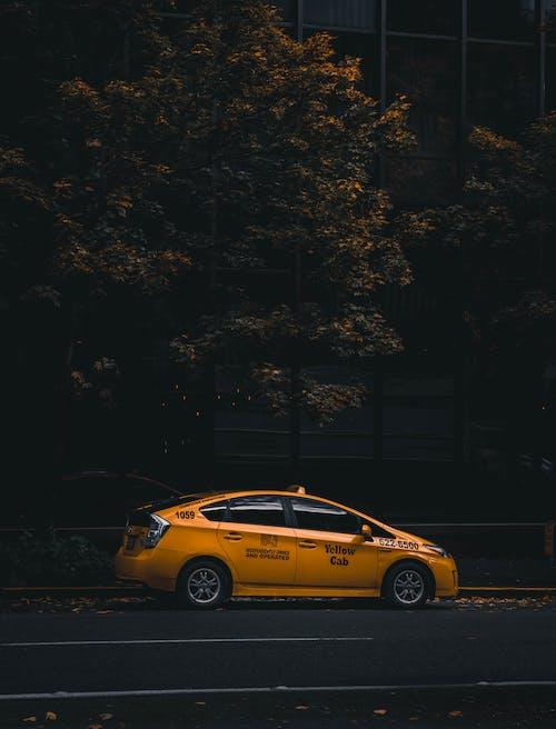 Yellow Sedan Parked Near Trees