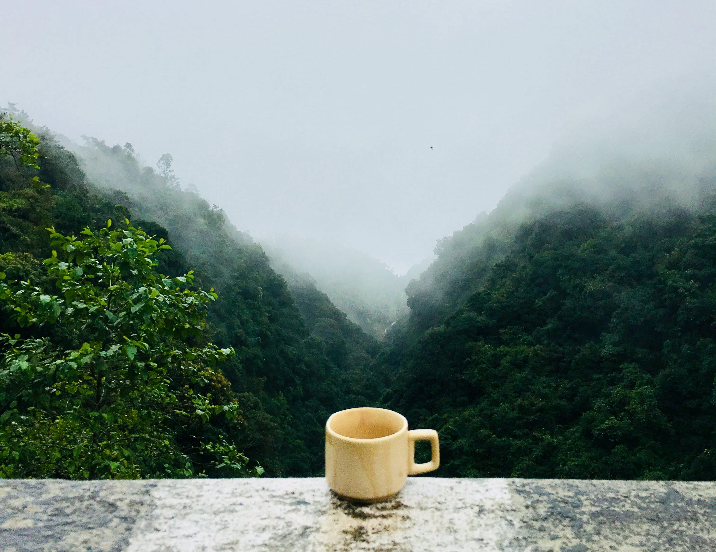 Základová fotografie zdarma na téma čaj, hora, horko, hrnek