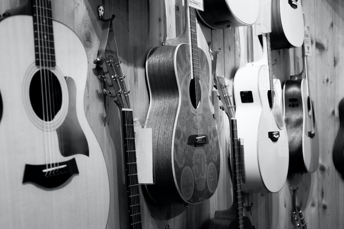 alb-negru, chitare, instrument muzical