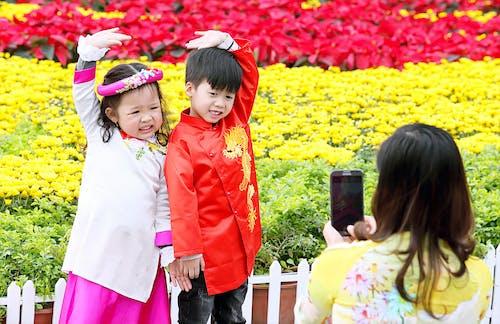 Free stock photo of Mùa Xuân.