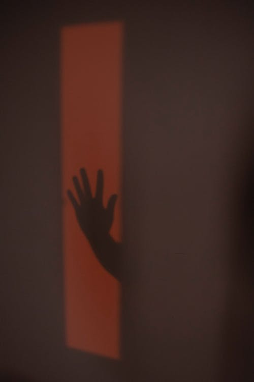Hand shadow of anonymous person on wall