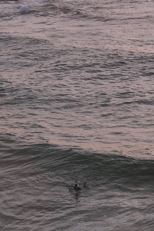 From above of anonymous person swimming in wavy rippling sea water at sunset