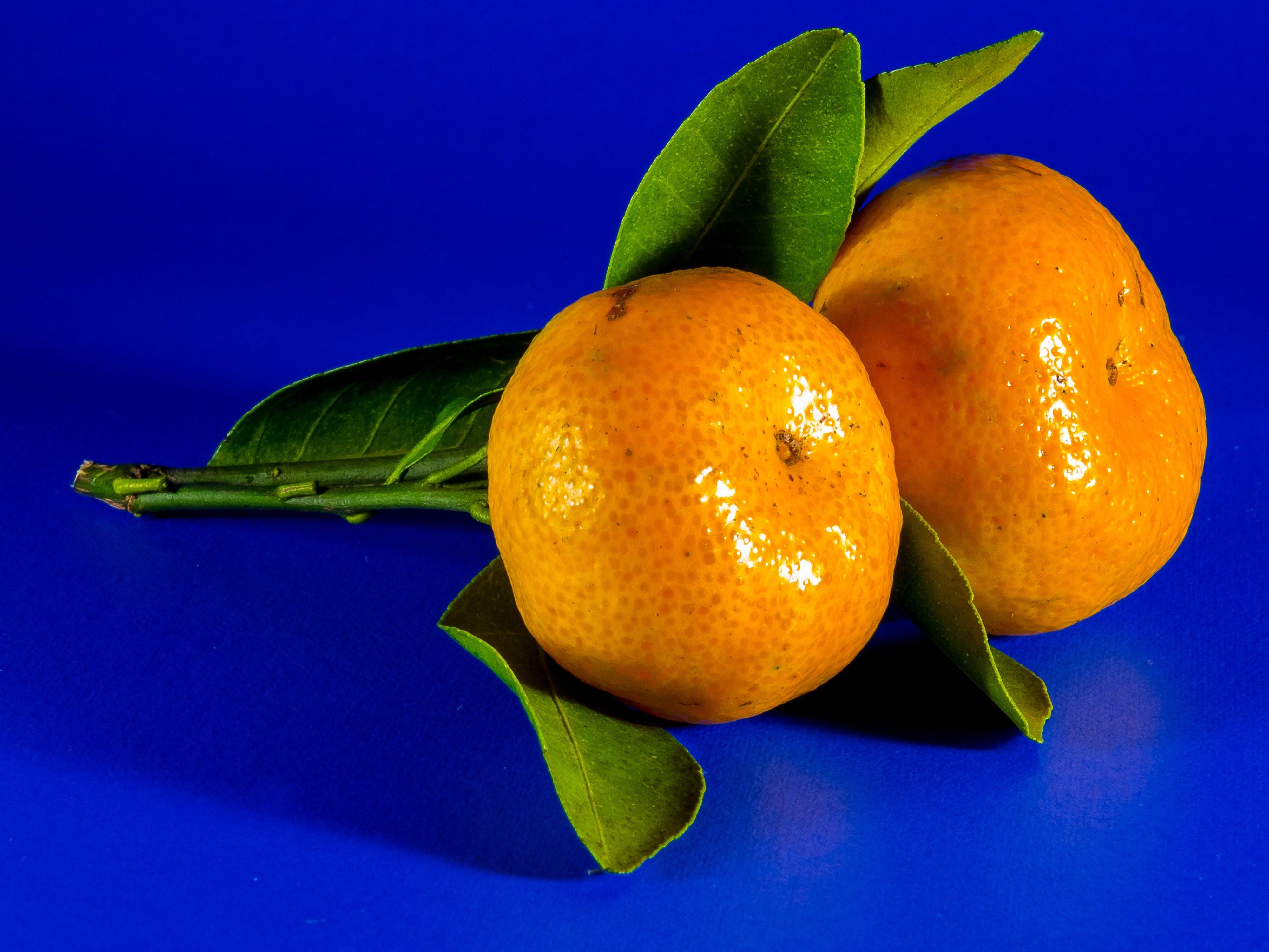 Free stock photo of orange, fruit, citrus fruit, mandarin