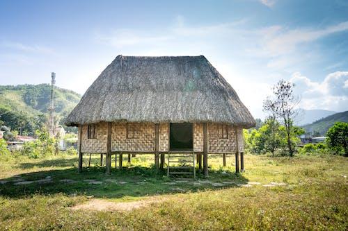 Small shabby hut on green terrain