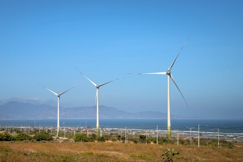 Rows of wind generators on land with plants against sea and mountain in daylight