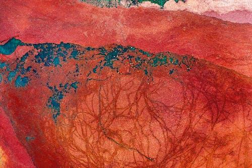 Gratis arkivbilde med abstrakt, akryl, børste