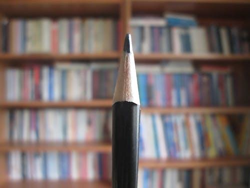 Çalışmak, kitaplar, kitaplık içeren Ücretsiz stok fotoğraf