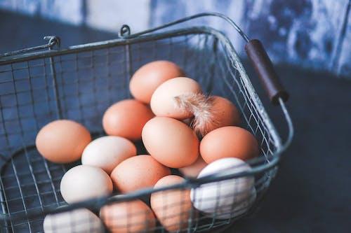 Foto d'estoc gratuïta de aus de corral, cistell, cistella, closca d'ou