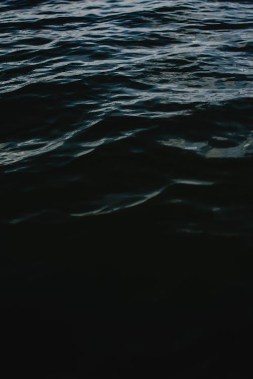 Základová fotografie zdarma na téma čeření, detail, jezero