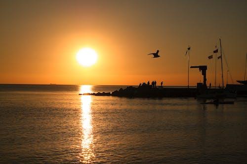 Foto d'estoc gratuïta de barques, capvespre, mar, moll