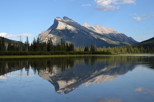 Foto profissional grátis de calma, cênico, lago