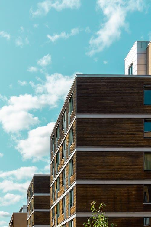 Безкоштовне стокове фото на тему «архітектура, бізнес, Будівля»