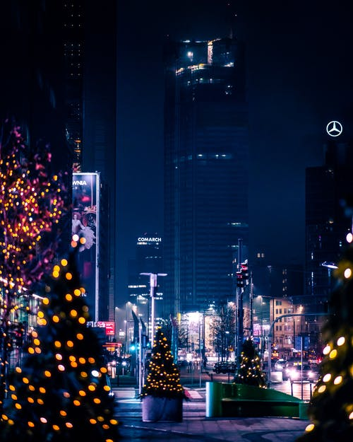Illuminated Christmas Trees on the Street