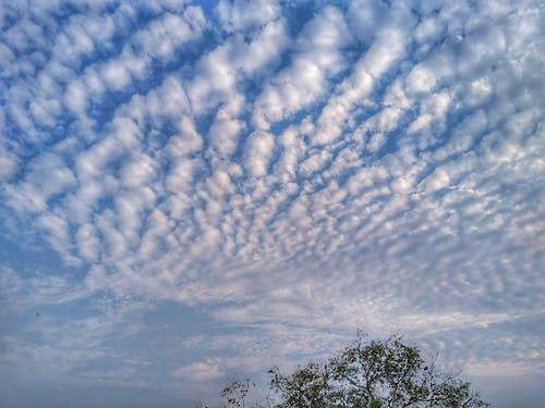 Gratis arkivbilde med blå himmel, over skyer, skyer, vakker himmel