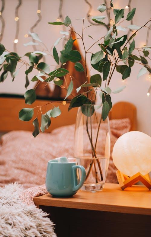 Безкоштовне стокове фото на тему «бамбук, ваза, горщик, Деревина»